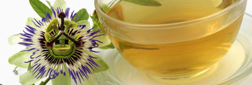 passiflore en thé
